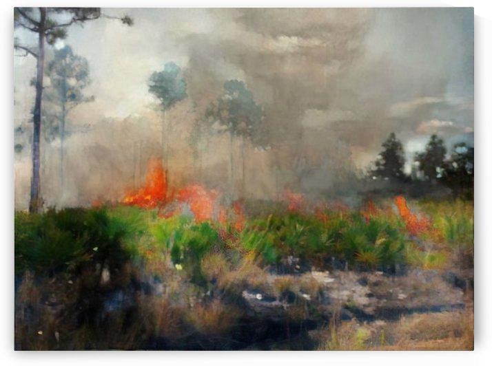 Final Fire by Kala