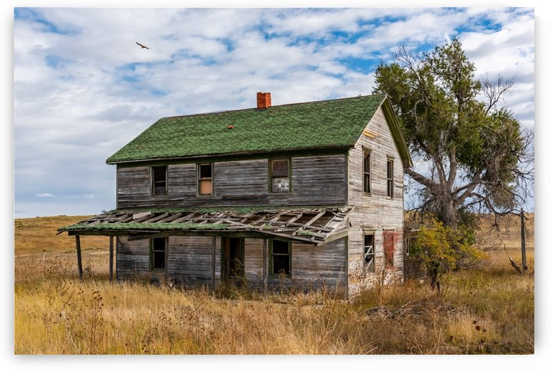 Abandoned Dreams by Garald Horst