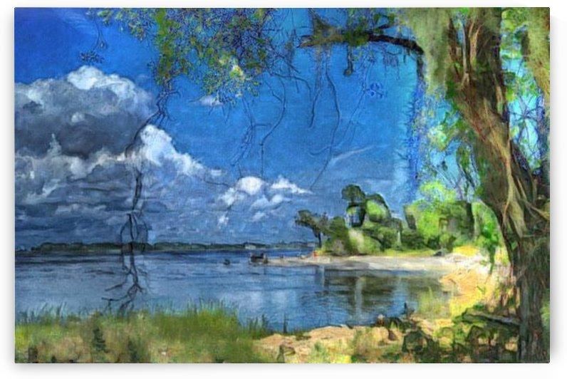 Blue nature by Kala