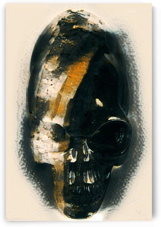 Alien Skull by Kala