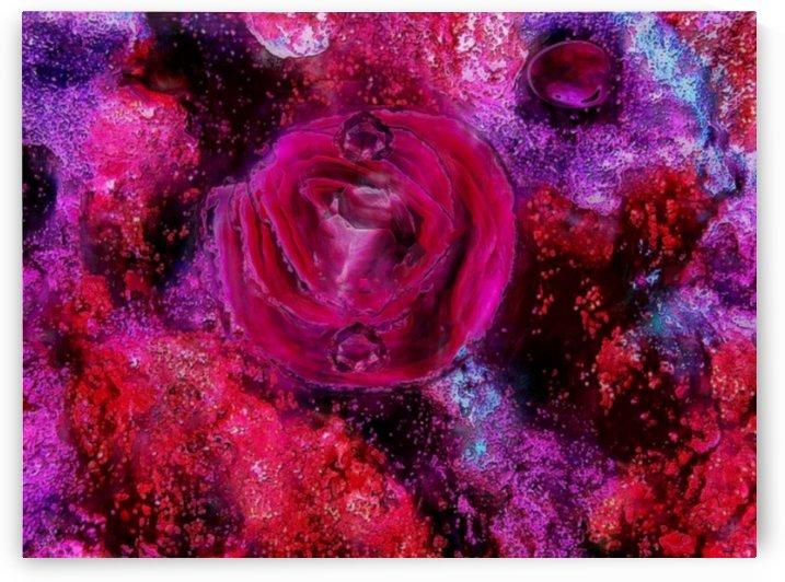 Rose me up by Kala