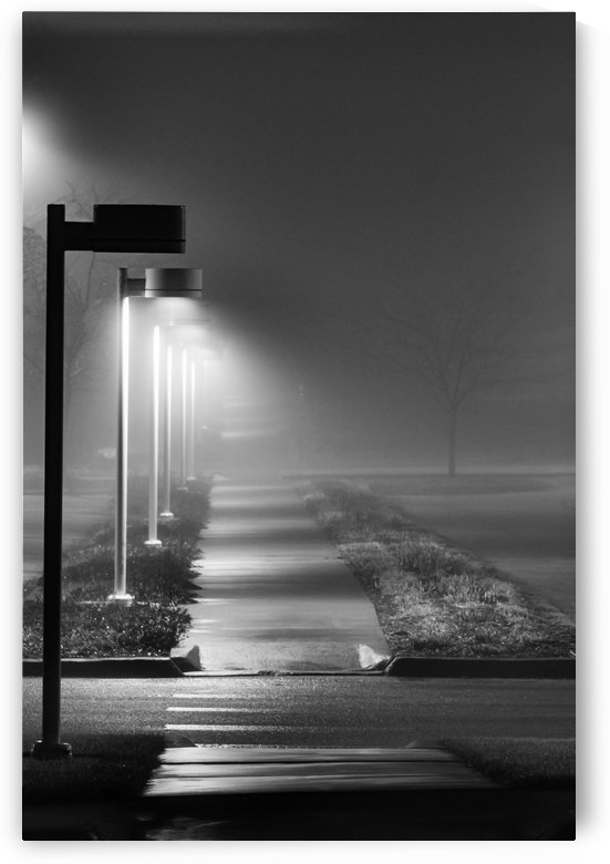 Foggy One Light Out BW by Garald Horst