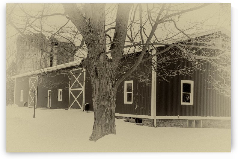 Pittsford Dairy Barn by William Norton Photography