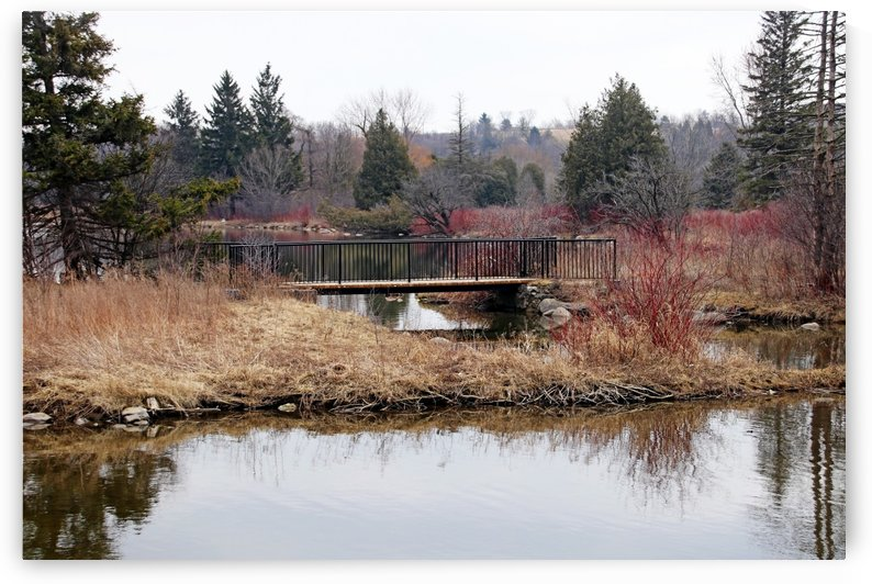 Bridge At York Lands Park by Deb Oppermann