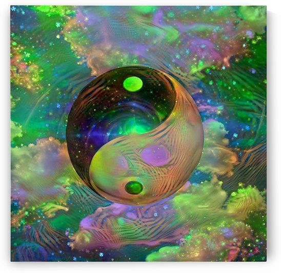 Yin Yang by Bruce Rolff