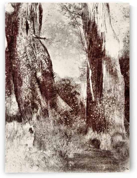 Trunks in the forest by Odilon Redon by Odilon Redon