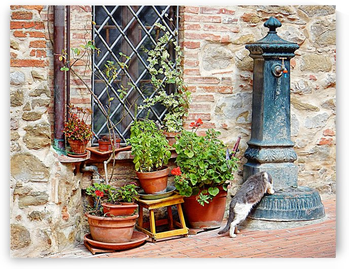 Pawse for a Drink in Paciano by Dorothy Berry-Lound