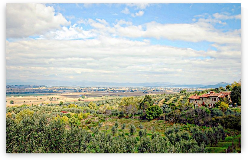Umbrian View by Dorothy Berry-Lound