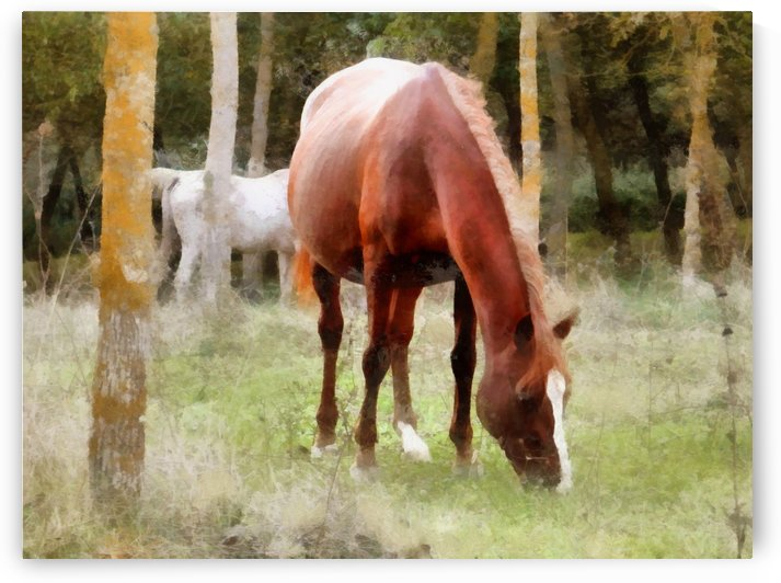 Pregnant Tan Mare Grazing by Dorothy Berry-Lound