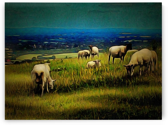 South Downs View 2 by Dorothy Berry-Lound