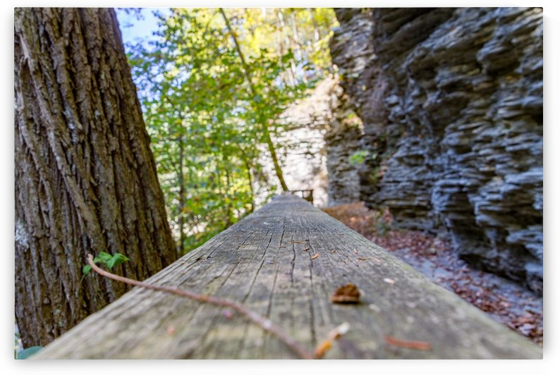 Eagle Cliff Falls 24 by William Norton Photography