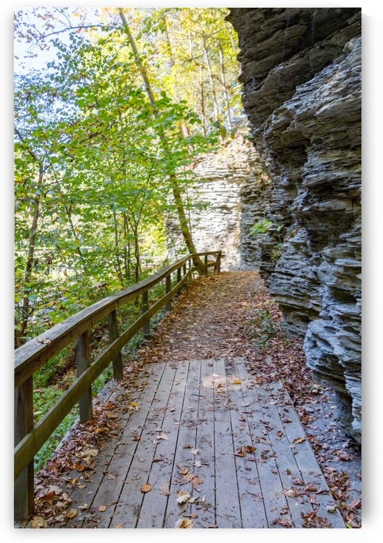 Eagle Cliff Falls 25 by William Norton Photography