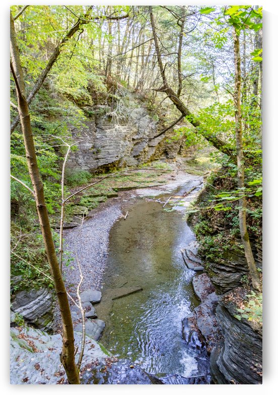 Eagle Cliff Falls 5 by William Norton Photography