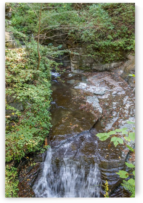 Eagle Cliff Falls 22 by William Norton Photography