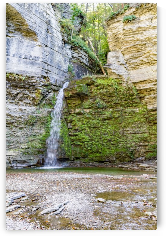 Eagle Cliff Falls 9 by William Norton Photography