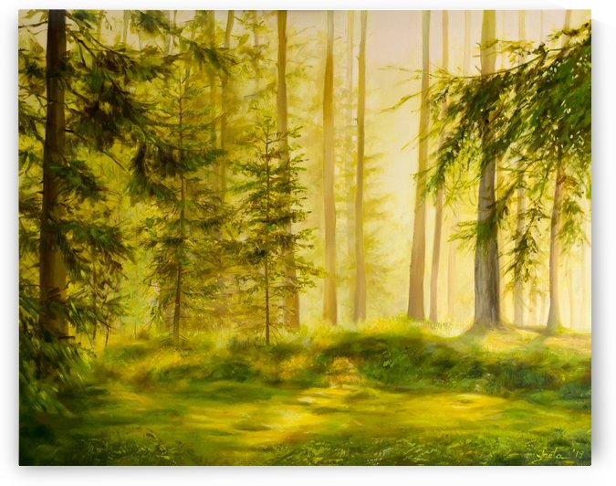 Forest Sunset by Ineta