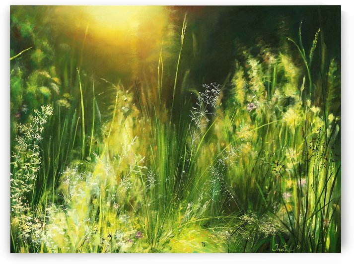 Sunrise Meadow by Ineta