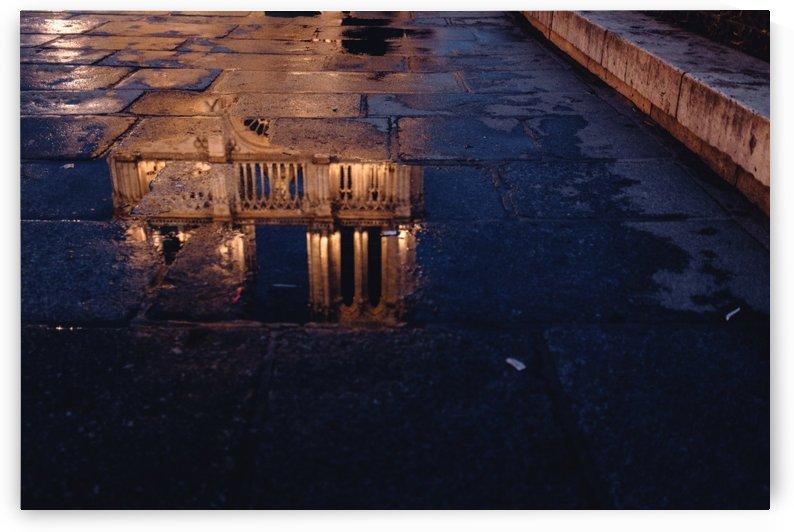 Notre Dame by Carlos Trejos
