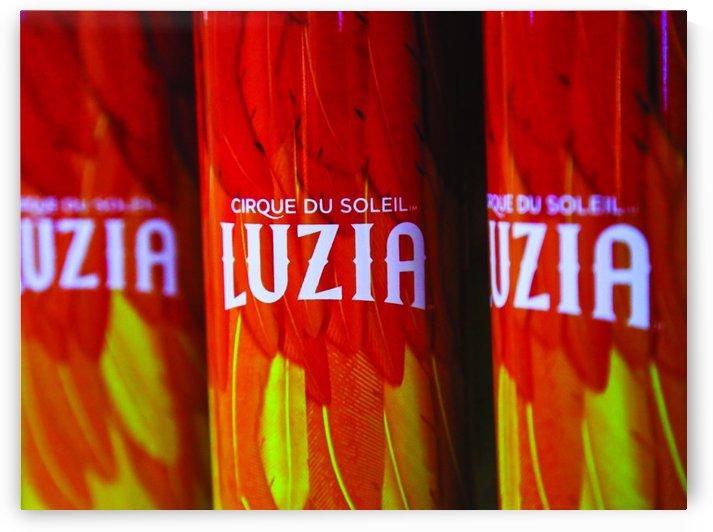 Cirque_Luzia_20x15_1555597025.02 by Lapine_Cirque