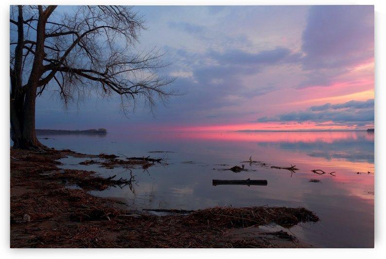 Miroir rosé- Pinkish miror by Sylvain Bergeron Photographies