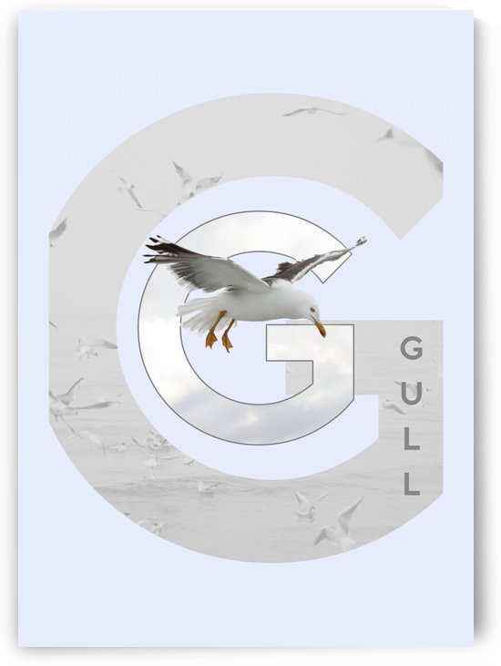 Gull by ABConcepts