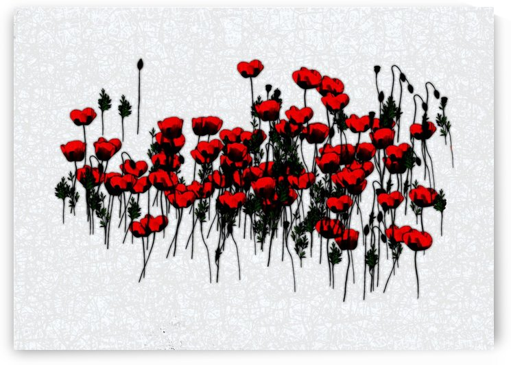 Abstract Poppies by ANA BORRAS