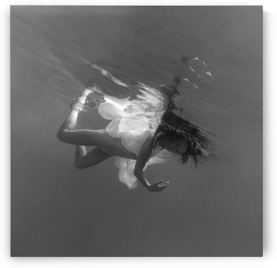 zero gravity by Dmiry Laudin
