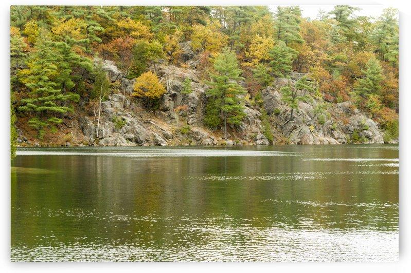 Autumn on Pink Lake 9 by Bob Corson