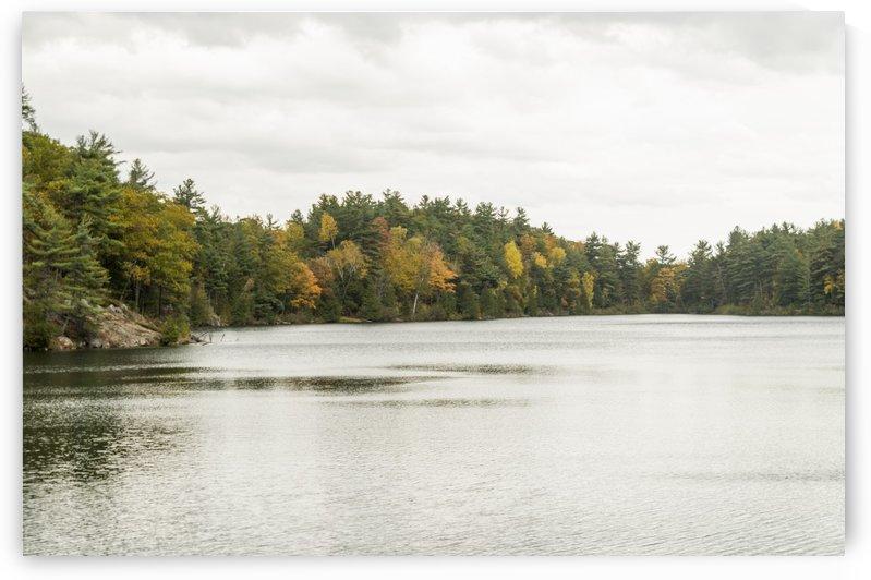 Autumn on Pink Lake 18 by Bob Corson