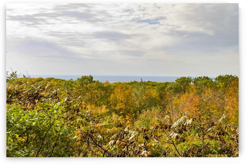 View of Ottawa Valley in Autumn 41 by Bob Corson