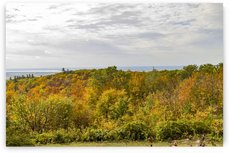 View of Ottawa Valley in Autumn 39 by Bob Corson