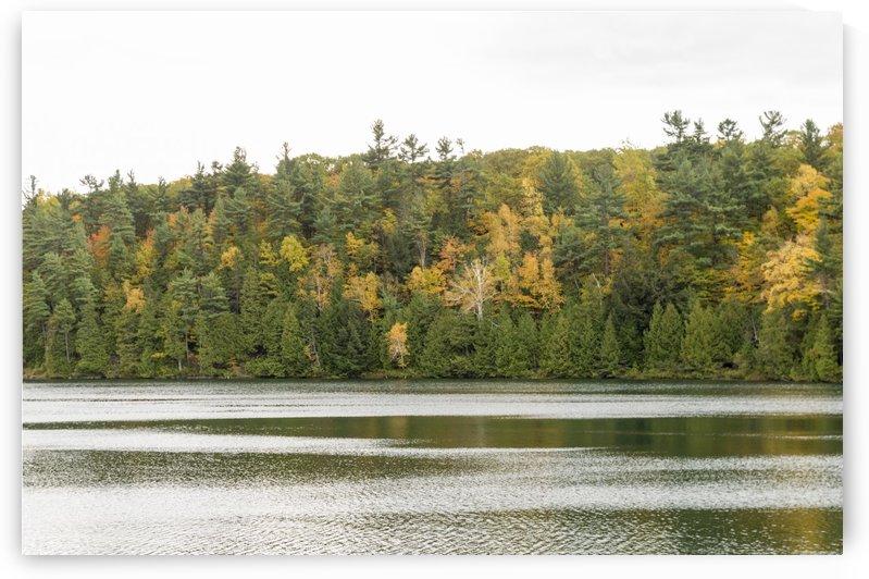Autumn on Pink Lake 16 by Bob Corson