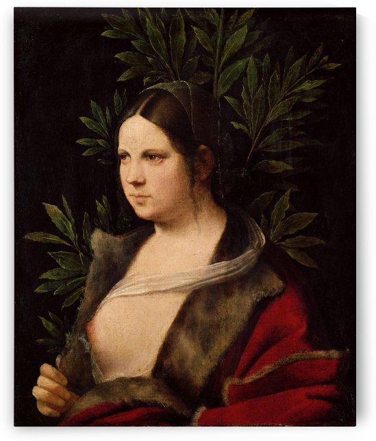 Laura di Audiberto di Noves by Giorgione