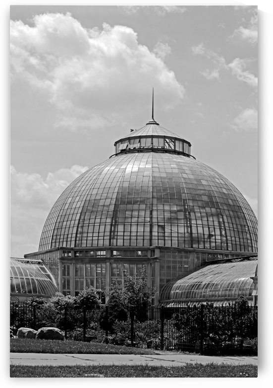 Belle Isle Conservatory 1 BW by Mary Bedy