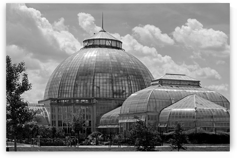 Belle Isle Conservatory 2 BW by Mary Bedy
