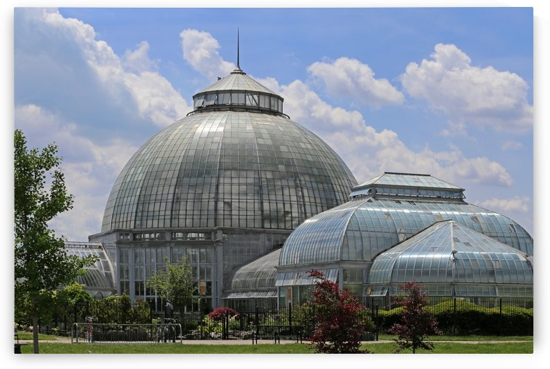 Belle Isle Conservatory 2 by Mary Bedy