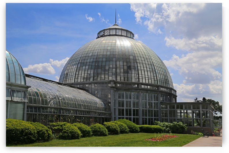 Belle Isle Conservatory 3 by Mary Bedy