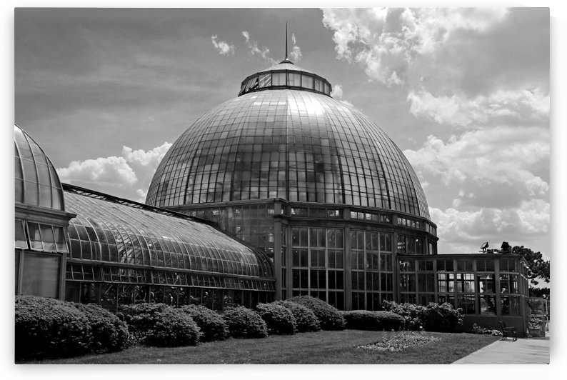 Belle Isle Conservatory 3 BW pic by Mary Bedy