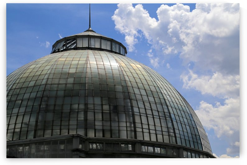 Belle Isle Conservatory Dome by Mary Bedy