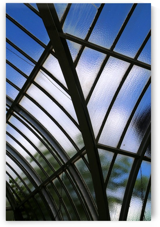 Conservatory Glass by Mary Bedy