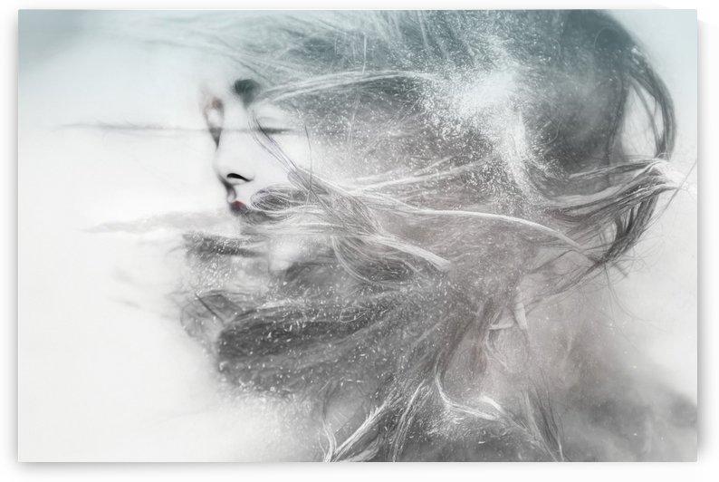 Windy by Elizabeth Berry