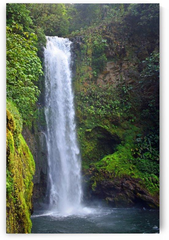 Costa Rica Waterfall by Senthia Sanders