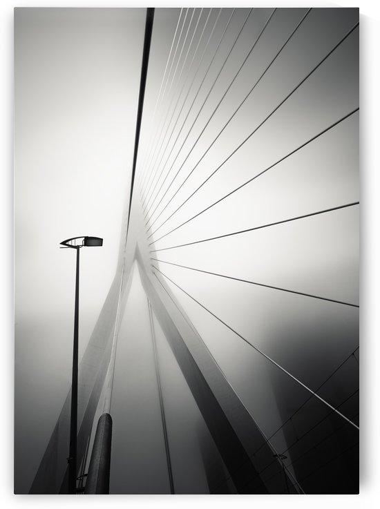 Erasmus bridge II by Minas Stratigos