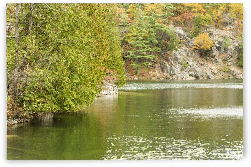 Autumn on Pink Lake 4 by Bob Corson