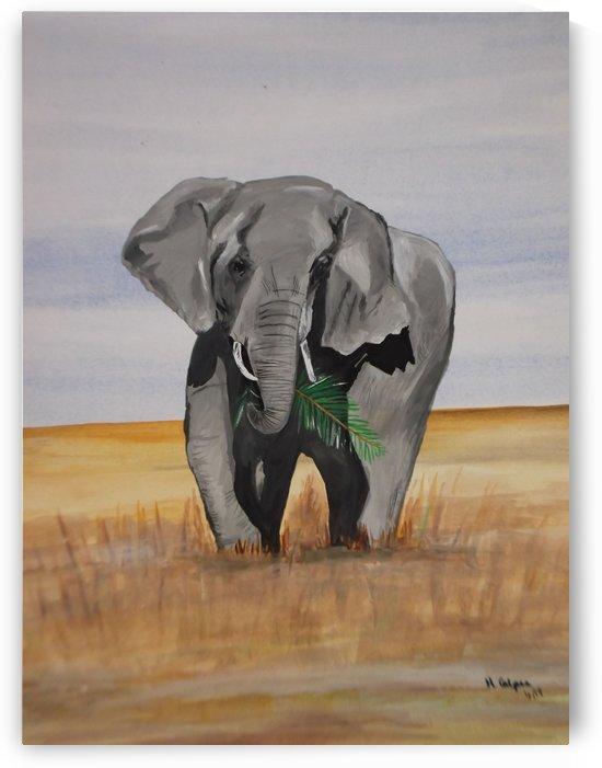 African Elephant by Hazel Calpee
