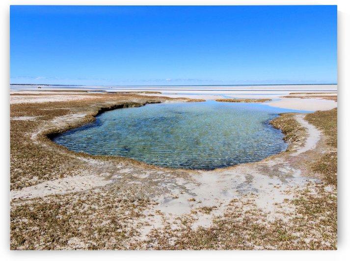 Skaket Beach tidal pool  by Photography by Janice Drew