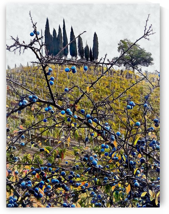 Berries in Autumn by Dorothy Berry-Lound