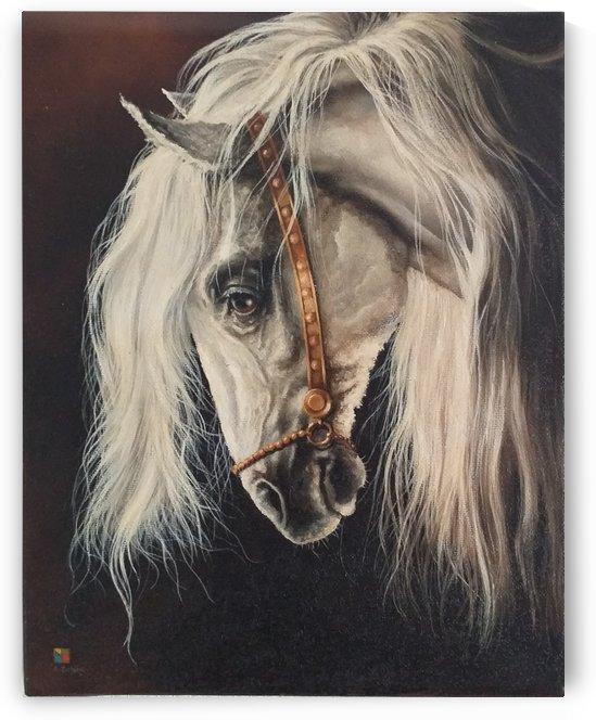 WHITE HORSE HEAD by Robert Zietara