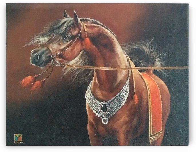 ARABIAN HORSE by Robert Zietara