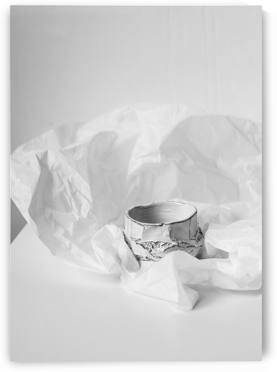 The White by Daria Minaeva